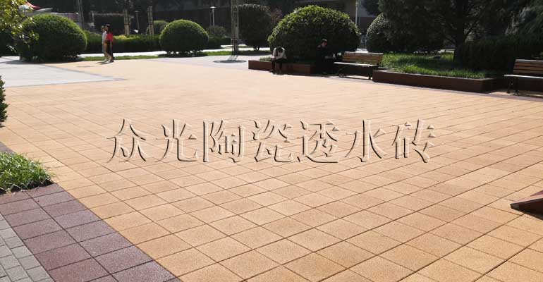Shaanxi Normal University Project